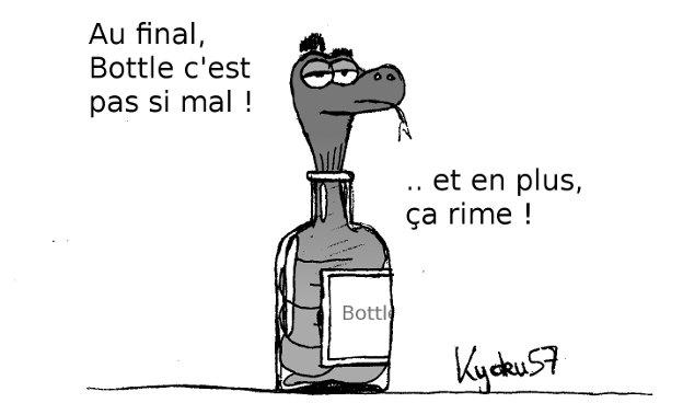 Conclusions sur Bottle