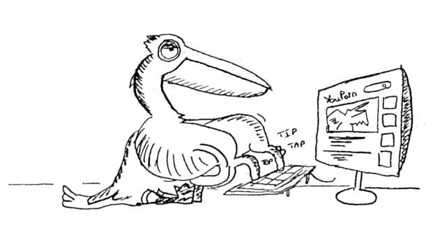 PelicanLeRetour